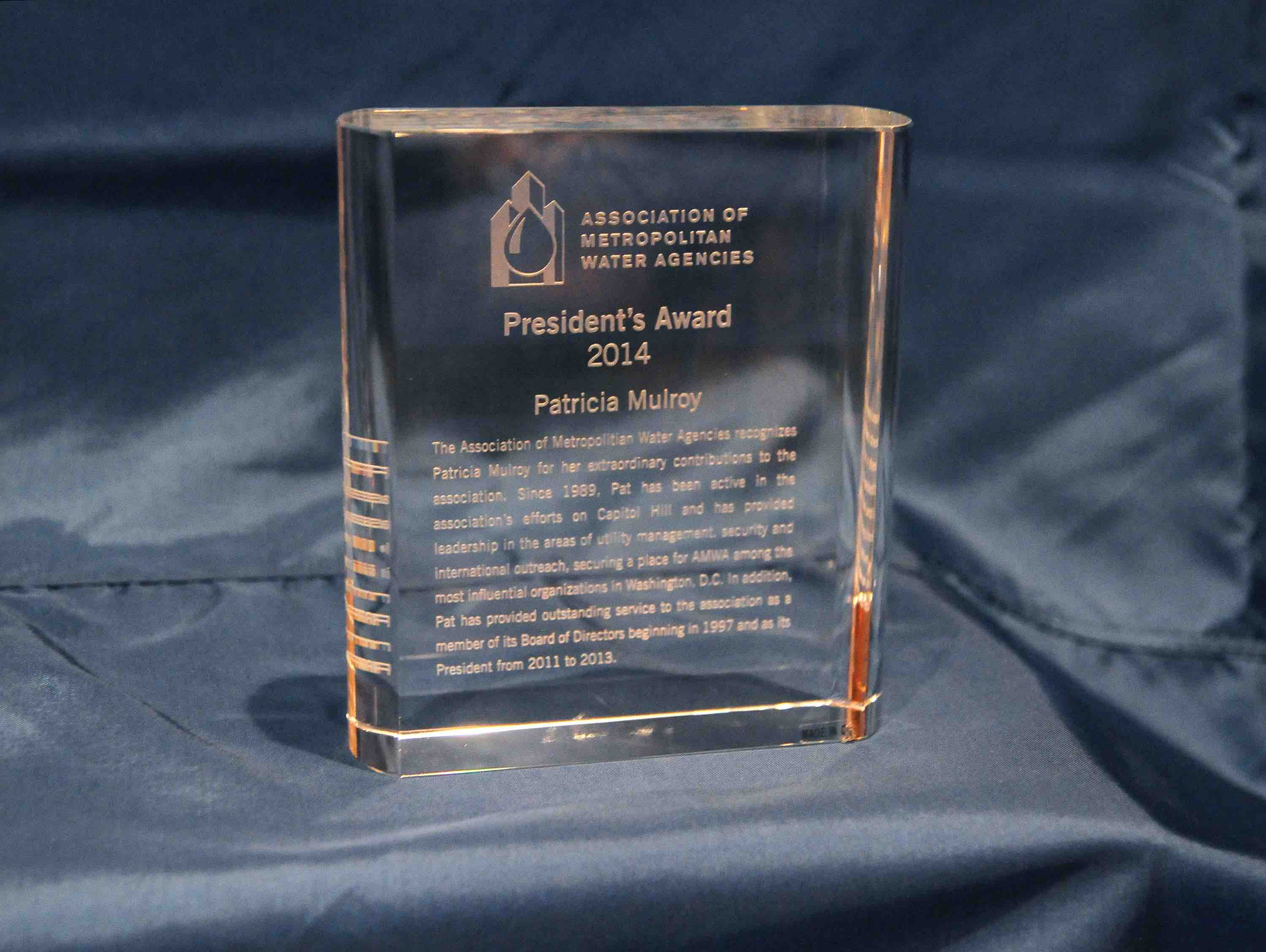 AMWA Presidents Award