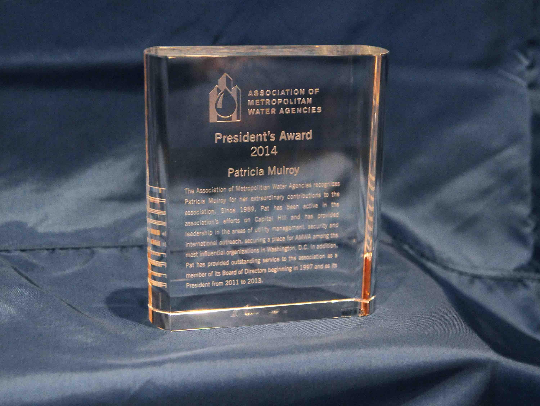 AMWA Presidents Award