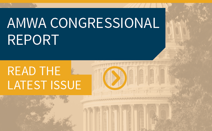 Congressional Report